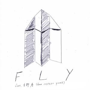 fly_2_1